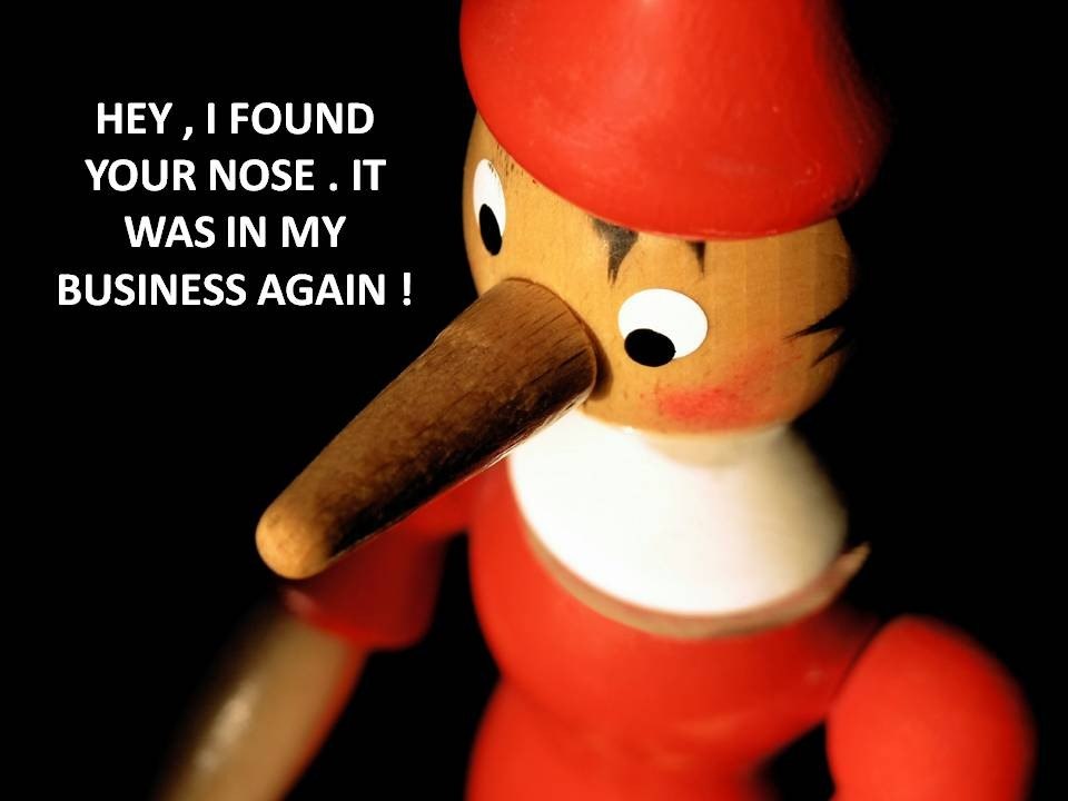 Funny Nosey Quote 5 Picture Quote #1