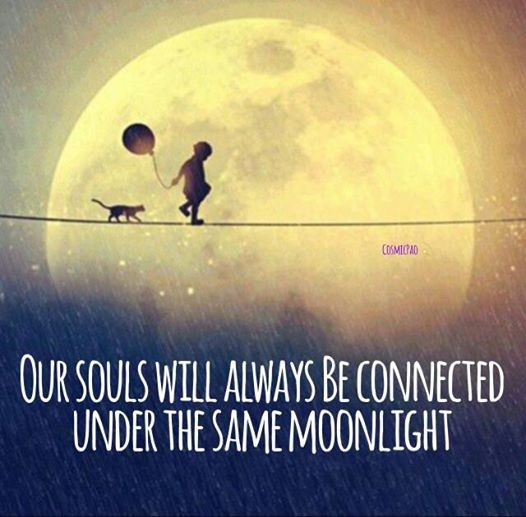 Full Moon Quote Quote Number 60 Picture Quotes Mesmerizing Quotes About Full Moon
