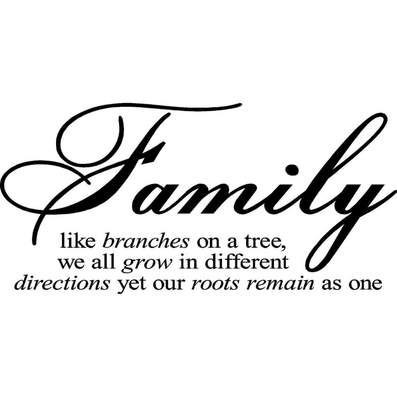 Family Reunion Quotes Magnificent Family Reunion Quotes Sayings Family Reunion Picture Quotes