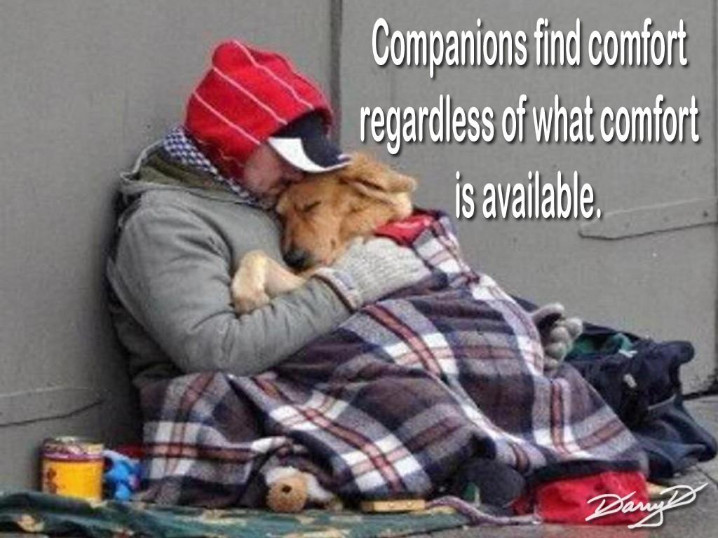 Companionship Quote 1 Picture Quote #1