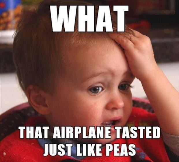 What! That airplane tasted just like peas Picture Quote #1