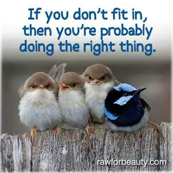 Its Okay To Be Different Quote 1 Picture Quote #1
