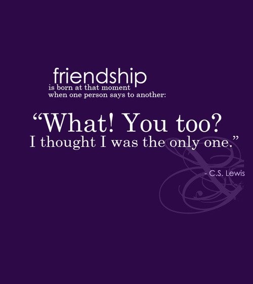 New Quotes About Friendship Magnificent New Friends Quote  Quote Number 683211  Picture Quotes