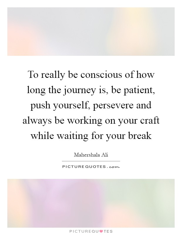 To really be conscious of how long the journey is, be patient, push yourself, persevere and always be working on your craft while waiting for your break Picture Quote #1