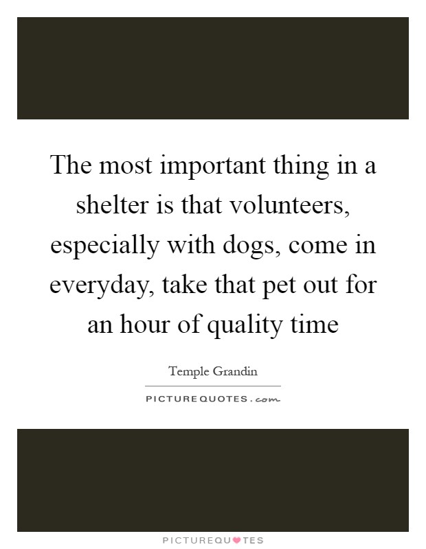 The most important thing in a shelter is that volunteers, especially with dogs, come in everyday, take that pet out for an hour of quality time Picture Quote #1