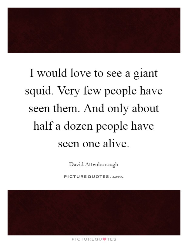 I would love to see a giant squid. Very few people have seen them. And only about half a dozen people have seen one alive Picture Quote #1