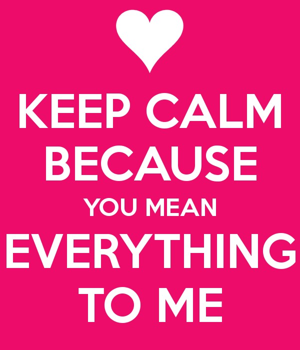 You Mean Everything To Me Quotes & Sayings