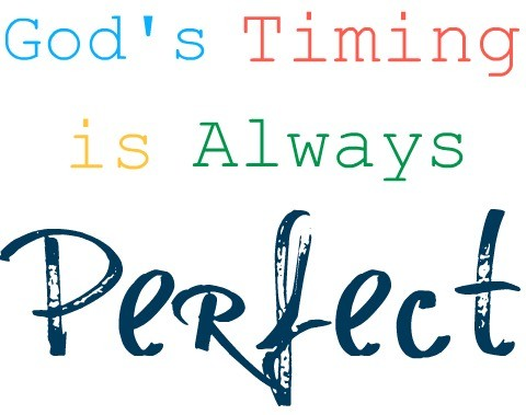 Trusting In Gods Timing Quote 3 Picture Quote #1
