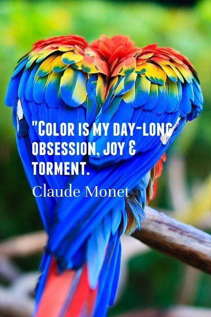 Colour Quote 4 Picture Quote #1
