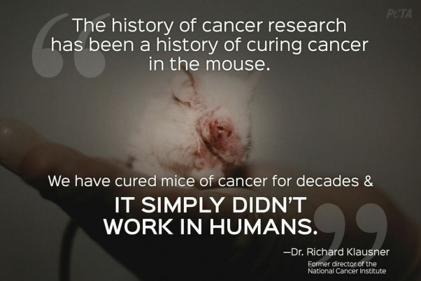 Animal Research Quote 4 Picture Quote #1