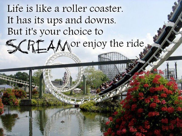 Lifes Ups And Downs Quote 1 Picture Quote #1