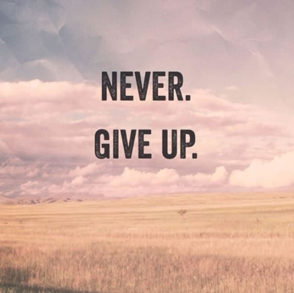 Never. Give up Picture Quote #1