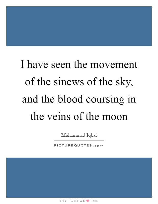 I have seen the movement of the sinews of the sky, and the blood coursing in the veins of the moon Picture Quote #1