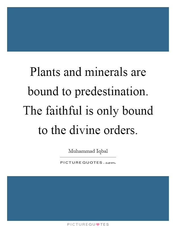 Plants and minerals are bound to predestination. The faithful is only bound to the divine orders Picture Quote #1