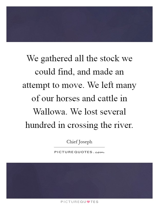 We gathered all the stock we could find, and made an attempt to move. We left many of our horses and cattle in Wallowa. We lost several hundred in crossing the river Picture Quote #1