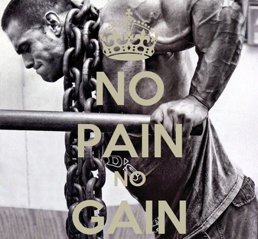 No Pain No Gain Quote 5 Picture Quote #1
