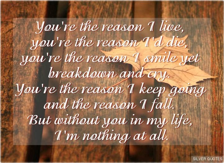 Faith Without Reason Quote: Life Without You Quotes & Sayings