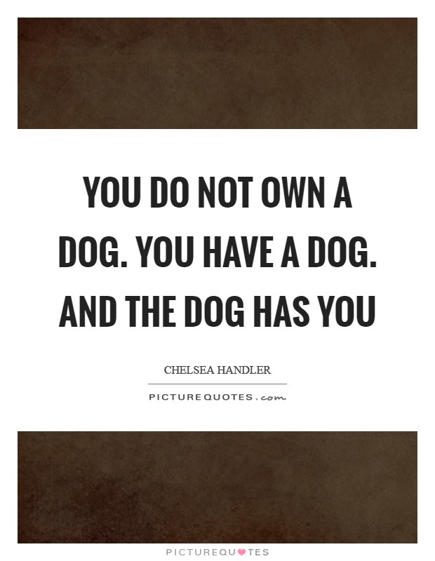 You do not OWN a dog. You HAVE a dog. And the dog HAS YOU Picture Quote #1
