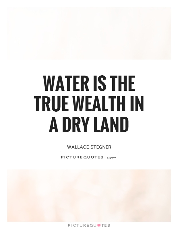 Water is the true wealth in a dry land Picture Quote #1