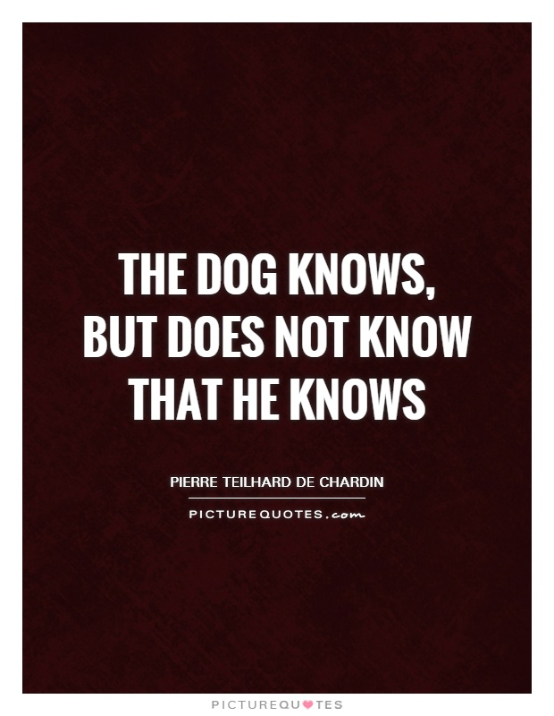 The dog knows, but does not know that he knows Picture Quote #1