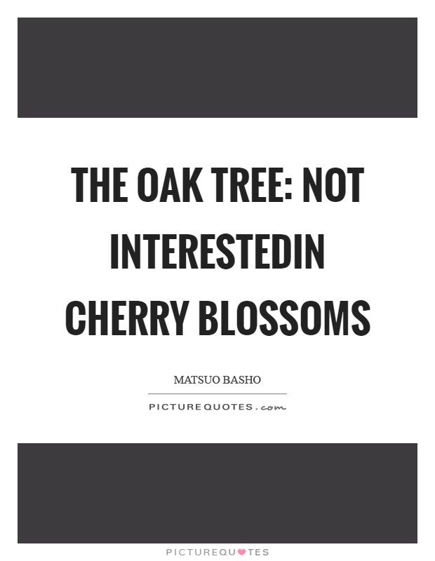 The oak tree: not interestedin cherry blossoms Picture Quote #1
