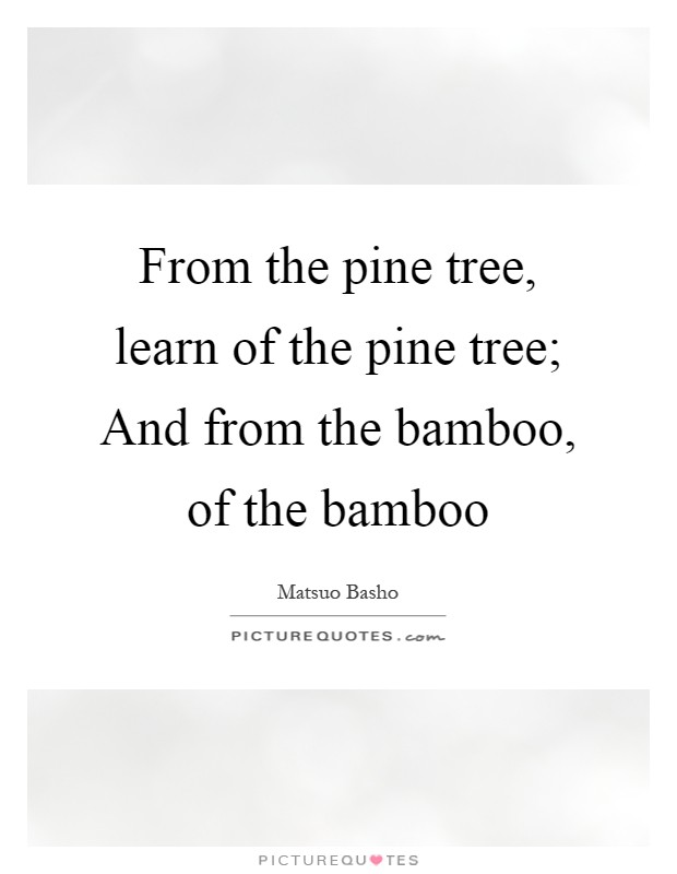 From the pine tree, learn of the pine tree; And from the bamboo, of the bamboo Picture Quote #1