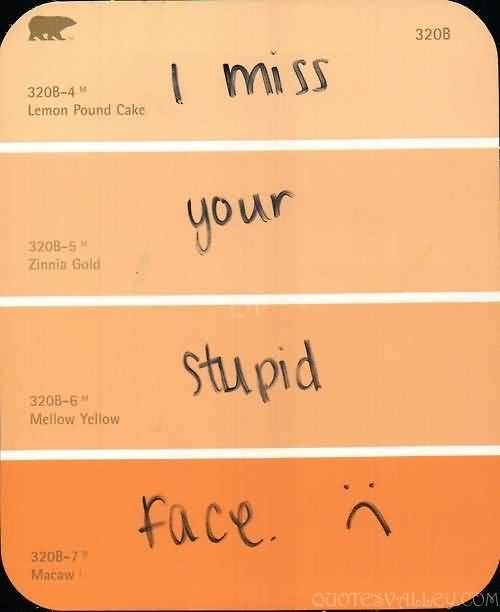 Sad I Miss You Quotes For Friends: We Will Miss You Funny Quote