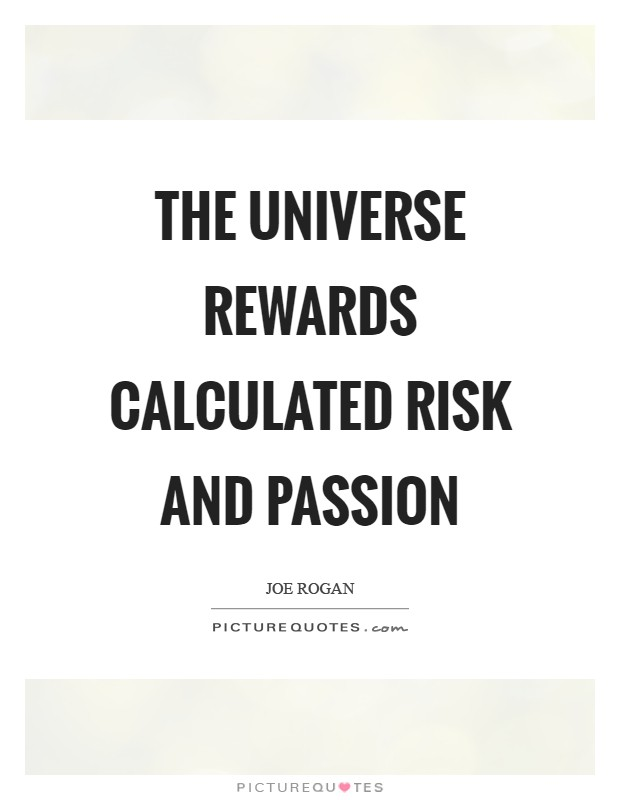 The Universe rewards calculated risk and passion Picture Quote #1