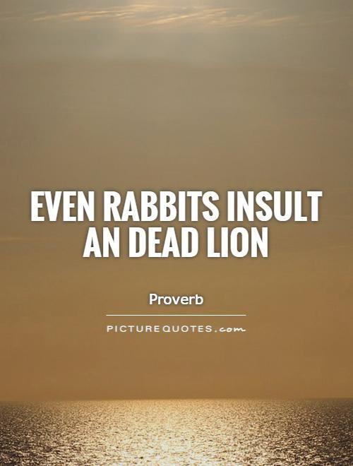 Rabbit Quote 1 Picture Quote #1
