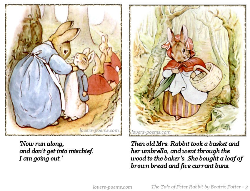 Tale Of Peter Rabbit Quote 1 Picture Quote #1