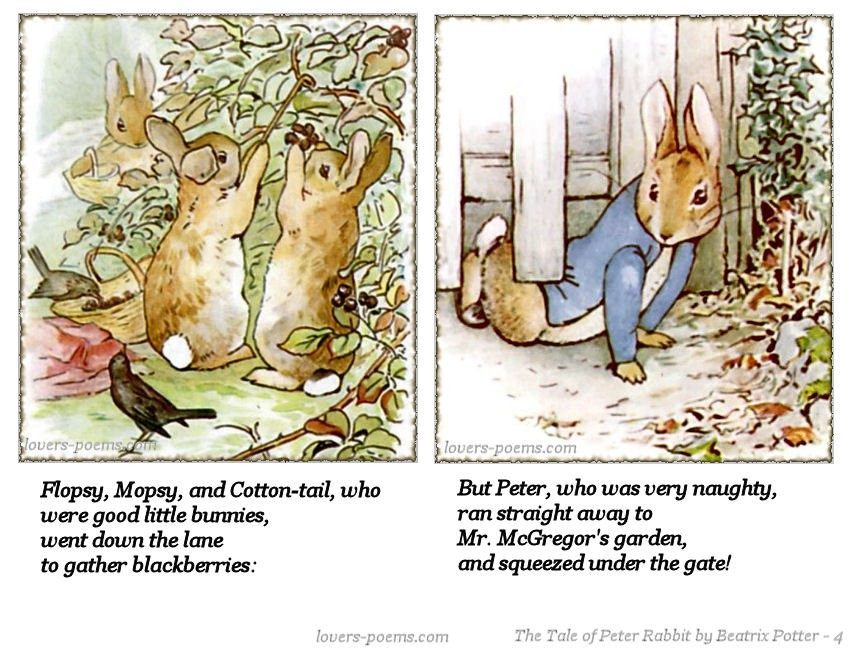 Tale Of Peter Rabbit Quote 2 Picture Quote #1
