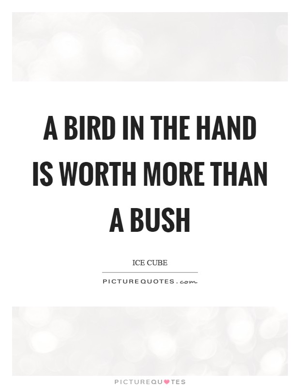 bird in hand is better than A bird in the hand is worth two in the bush having something that is certain is much better than taking a risk for more, because chances are you might lose everything idiom origin.
