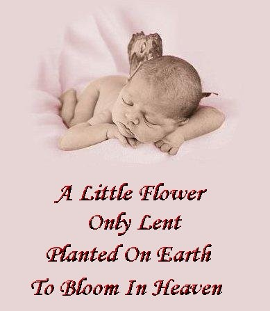 Baby Birthday In Heaven Quote | Quote Number 690718 ...