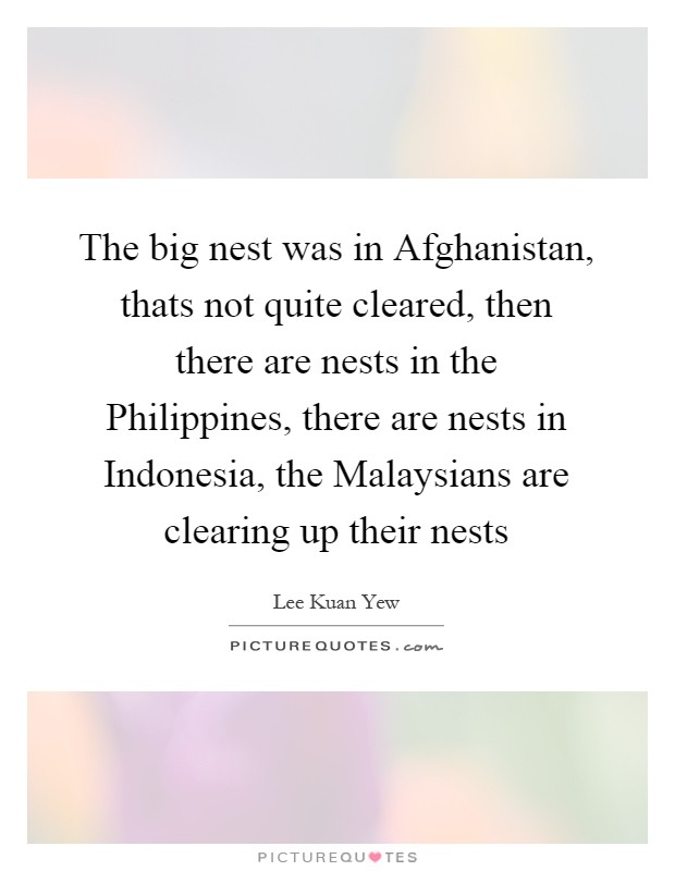 The big nest was in Afghanistan, thats not quite cleared, then there are nests in the Philippines, there are nests in Indonesia, the Malaysians are clearing up their nests Picture Quote #1