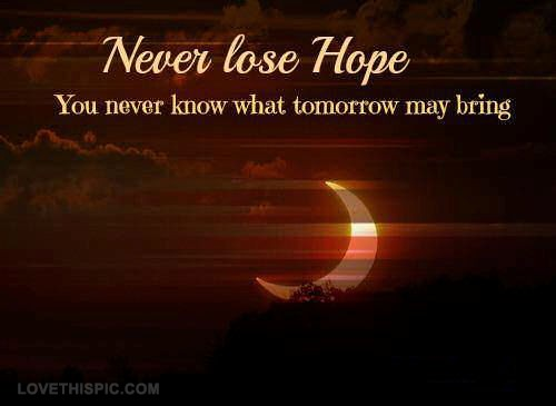 Never Lose Hope Quote 1 Picture Quote #1