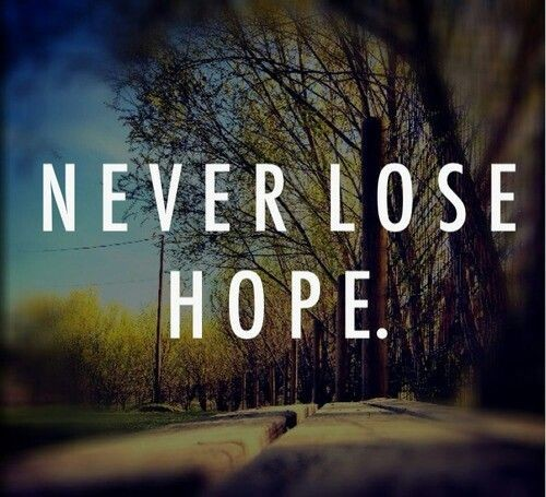 Never Lose Hope Quote 2 Picture Quote #1
