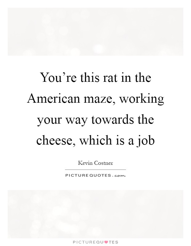 You're this rat in the American maze, working your way towards the cheese, which is a job Picture Quote #1