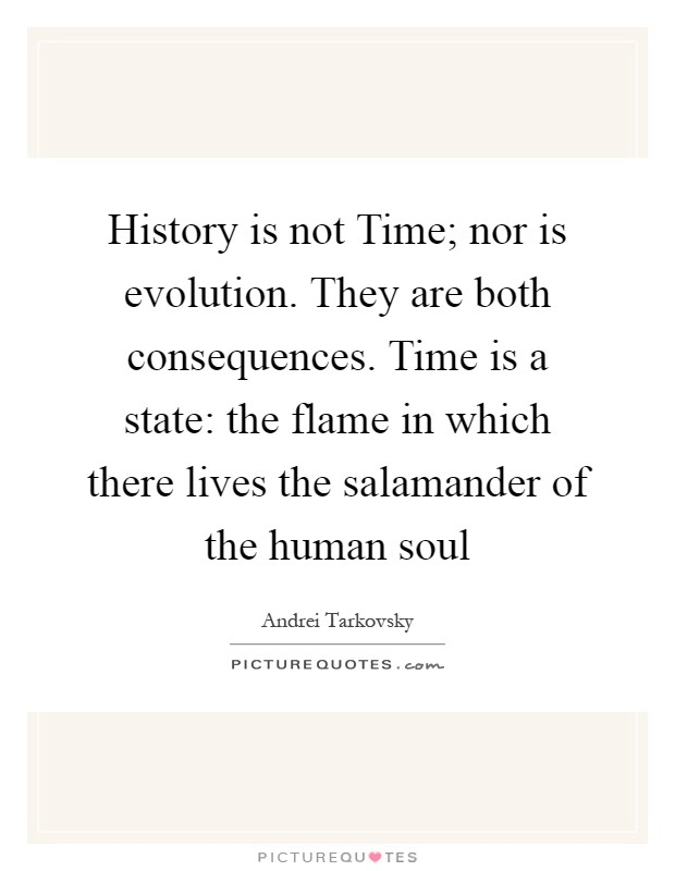 History is not Time; nor is evolution. They are both consequences. Time is a state: the flame in which there lives the salamander of the human soul Picture Quote #1