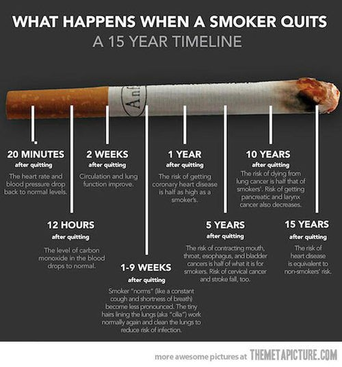 Quit Smoking Quote 2 Picture Quote #1