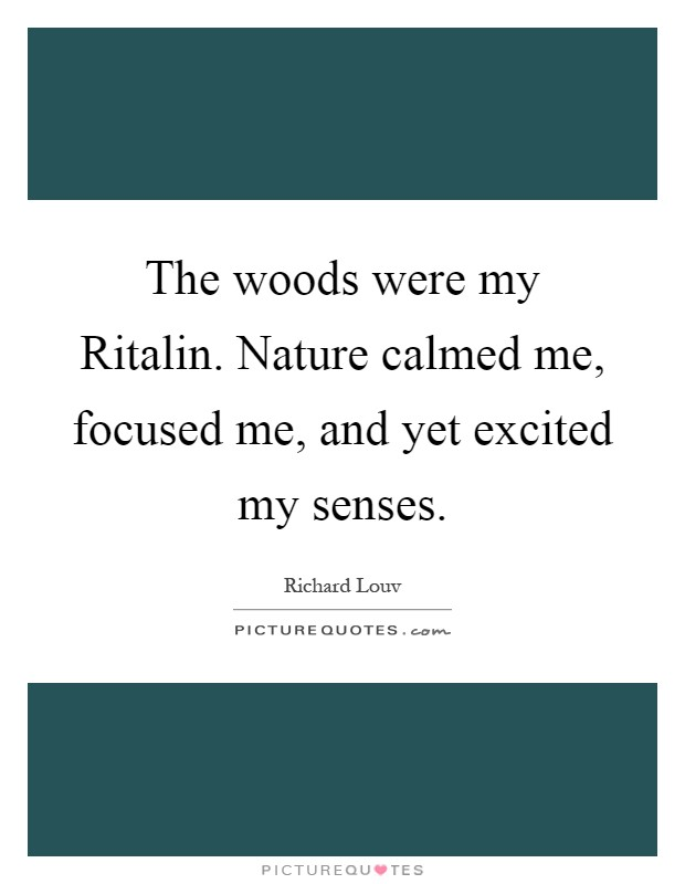 The woods were my Ritalin. Nature calmed me, focused me, and yet excited my senses Picture Quote #1