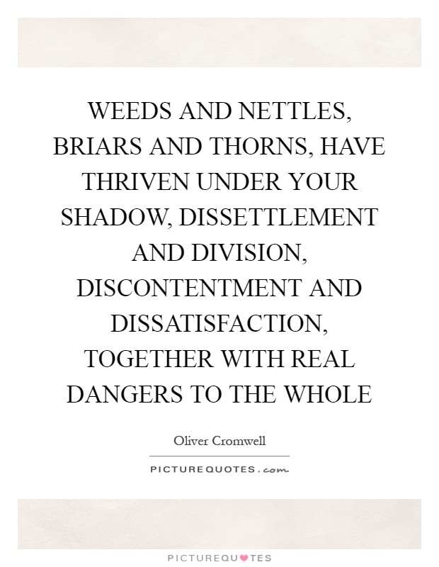 WEEDS AND NETTLES, BRIARS AND THORNS, HAVE THRIVEN UNDER YOUR SHADOW, DISSETTLEMENT AND DIVISION, DISCONTENTMENT AND DISSATISFACTION, TOGETHER WITH REAL DANGERS TO THE WHOLE Picture Quote #1