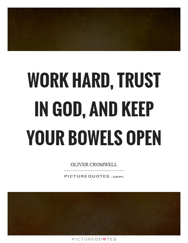 Work hard, trust in God, and keep your bowels open Picture Quote #1