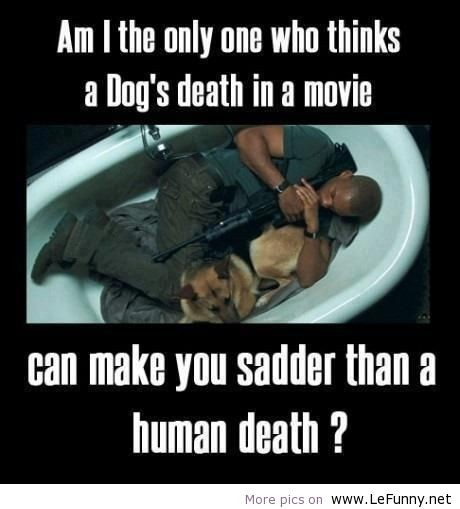 Dog Death Quote 3 Picture Quote #1