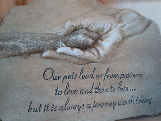 Dog Death Quotes | Dog Death Sayings | Dog Death Picture Quotes
