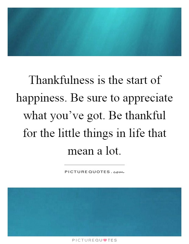 Thankfulness is the start of happiness. Be sure to appreciate what you've got. Be thankful for the little things in life that mean a lot Picture Quote #1