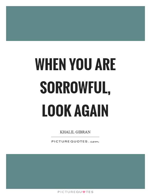When you are sorrowful, look again Picture Quote #1