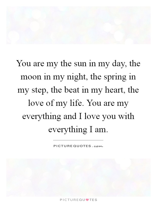 You are my the sun in my day, the moon in my night, the ...