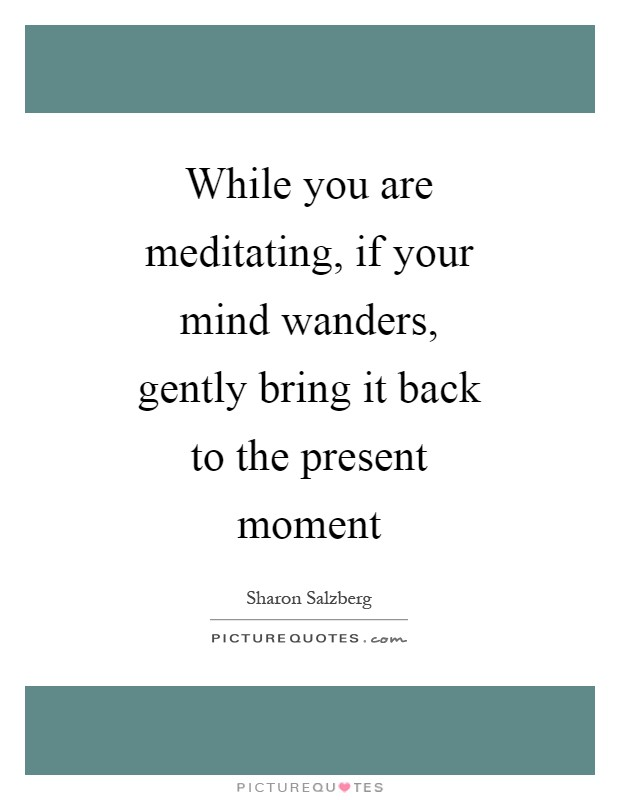 While you are meditating, if your mind wanders, gently bring it back to the present moment Picture Quote #1