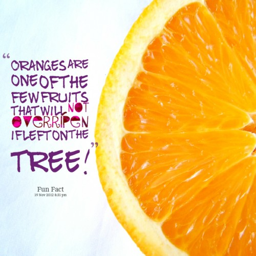Fruit Quote 3 Picture Quote #1