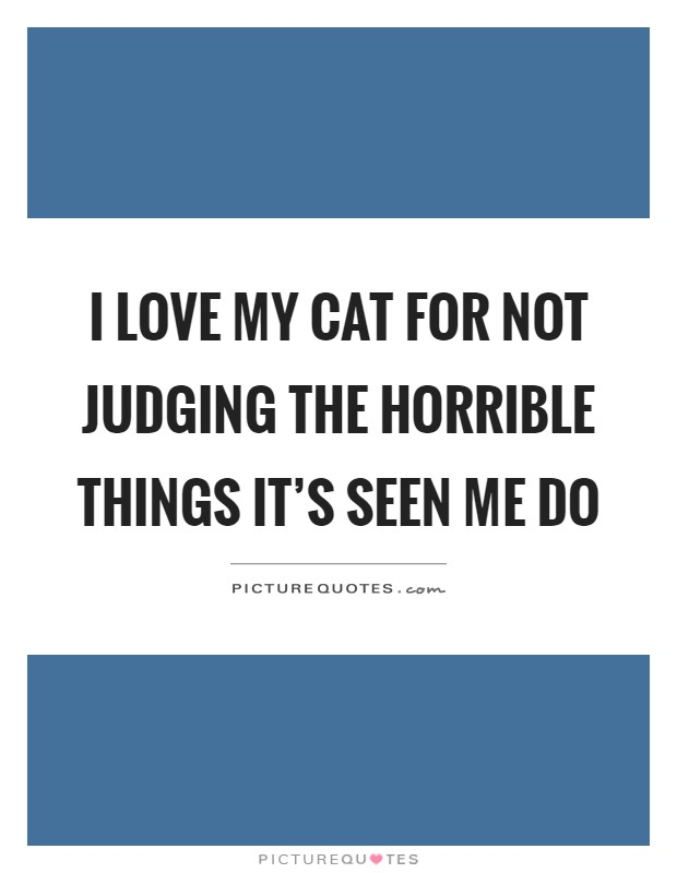 I love my cat for not judging the horrible things it's seen me do Picture Quote #1